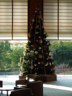 ロビーのクリスマスツリー.jpg