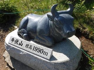 牛伏山.jpg