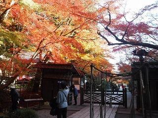 石山寺入口.jpg